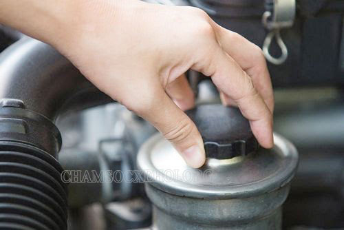 dầu trợ lực tay lái 2020