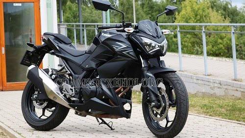 xe máy Kawasaki Z300