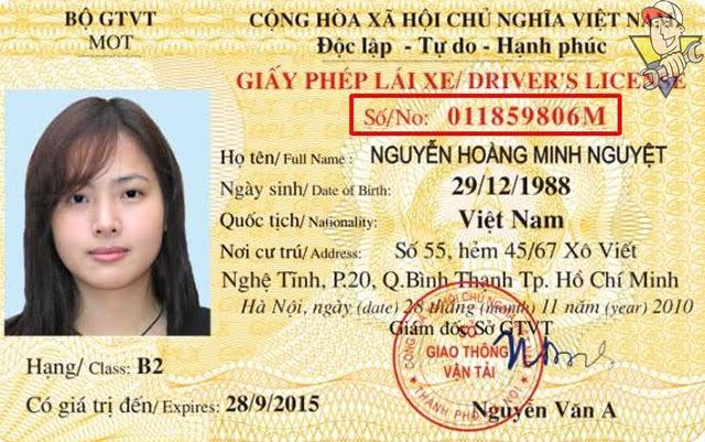 cách kiểm tra giấy phép lái xe ô tô đúng nhất