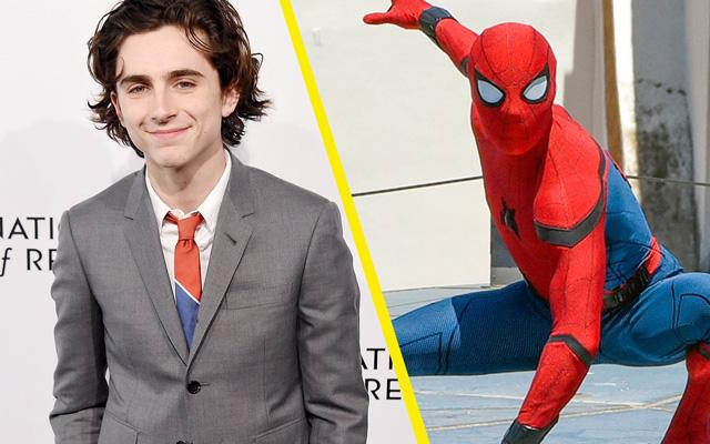 """Timothee Chalamet đã từng bị """"Trượt"""" Spiderman người nhện"""