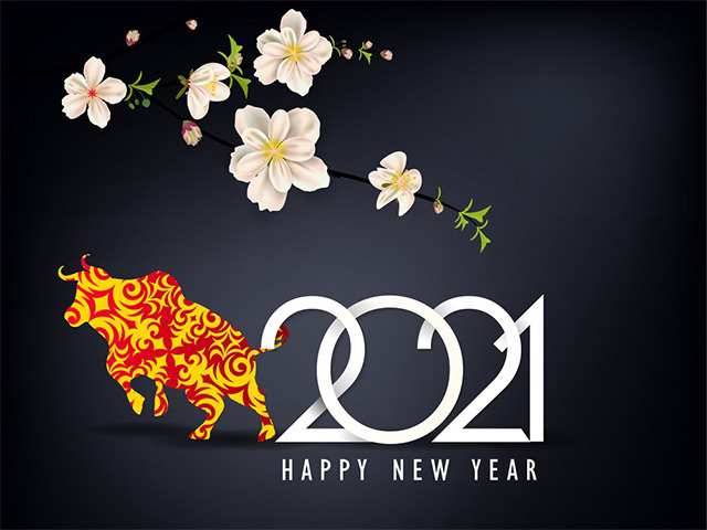 Ảnh chúc mừng năm mới độc đáo