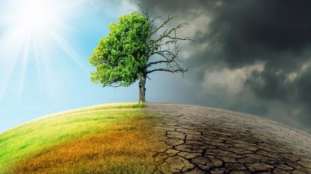 Khắc phục hậu quả biến đổi khí hậu