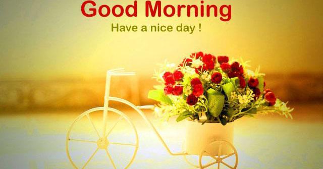 Sưu tầm lời chúc vợ buổi sáng tốt lành bằng tiếng Anh